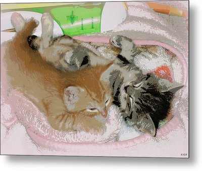 Cozy Kittens Metal Print
