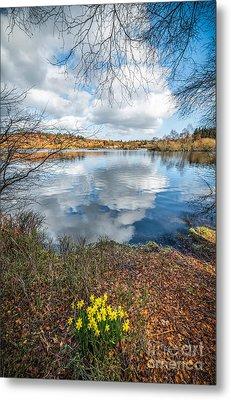 Daffodil Lake Metal Print by Adrian Evans