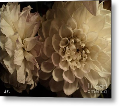Metal Print featuring the photograph Dahlia Duo by Geri Glavis