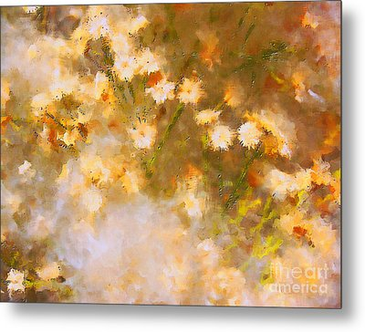 Daisy A Day 21 Metal Print by Julie Lueders