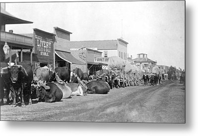 Metal Print featuring the photograph Dakota Territory, C1888 by Granger