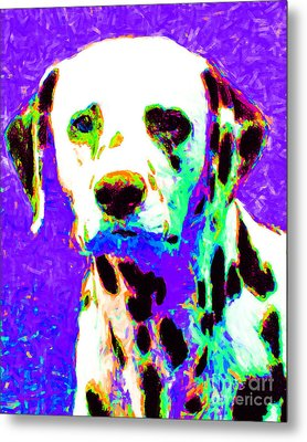 Dalmation Dog 20130125v4 Metal Print by Wingsdomain Art and Photography