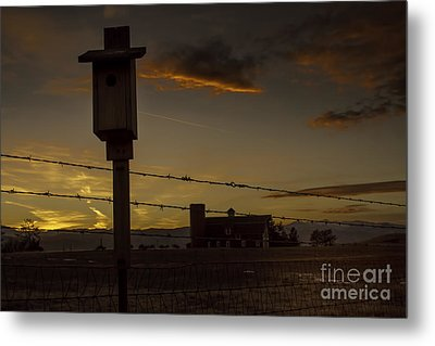 Metal Print featuring the photograph Daniel's Dusk by Kristal Kraft