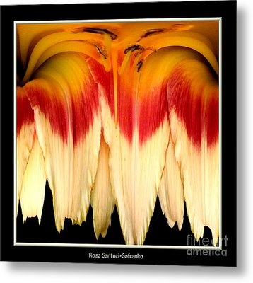 Daylily Flower Abstract 2 Metal Print by Rose Santuci-Sofranko