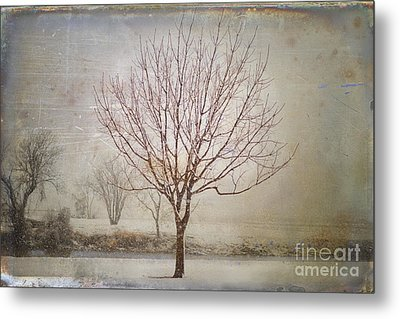Days Of Old Metal Print by Betty LaRue