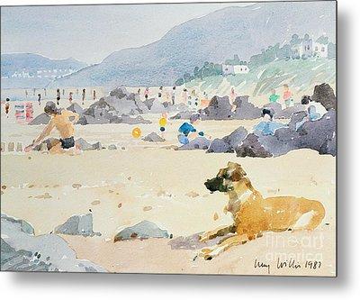 Dog On The Beach Woolacombe Metal Print