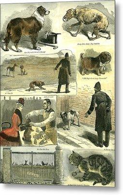 Dogs U.k. Police Regulations 1885 Cat Man Woman Hat Cane Metal Print by English School