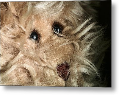 Don't Be Scared To Love Me Metal Print by JC Findley