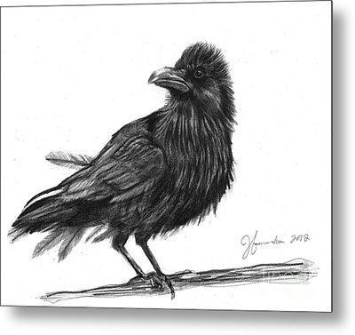Dream Crow Metal Print by J Ferwerda
