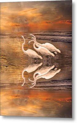 Dreaming Of Egrets By The Sea Reflection Metal Print by Betsy Knapp