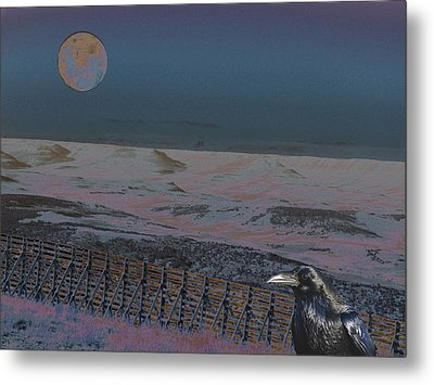 Metal Print featuring the photograph Dreamland by Aurora Levins Morales