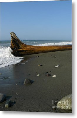 Driftwood Metal Print by Jane Ford