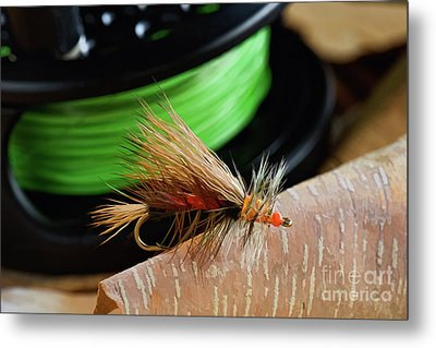 Dry Fly - D003399b Metal Print by Daniel Dempster