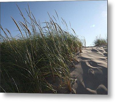 Dune Grass Metal Print by Tara Lynn