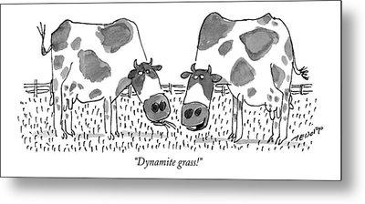 Dynamite Grass! Metal Print