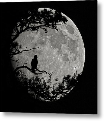 Eagle Moon Metal Print by Ernie Echols