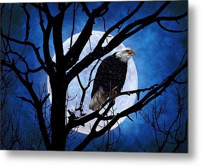 Eagle Night Metal Print