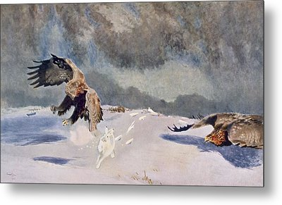 Eagles And Rabbit, 1922 Metal Print