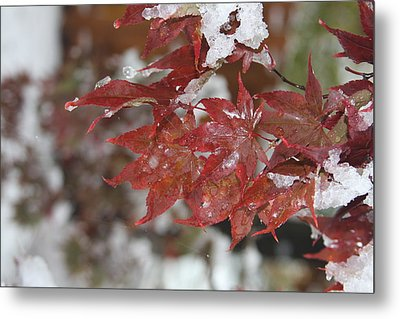Early Snow Metal Print by Vadim Levin