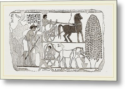 Egyptian Painting Metal Print by Litz Collection