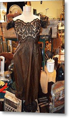 Elegance In Brown Metal Print by Cindy Nunn