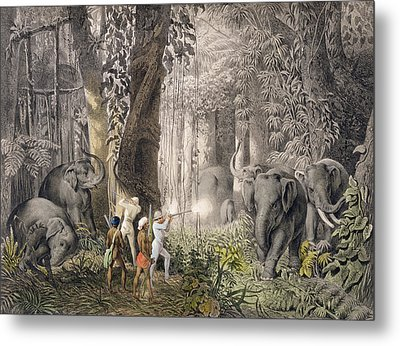 Elephant Hunt In The Region Of Logalla Metal Print by Graf Emanuel Andrasy