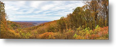 Elevated View Of Autumn Trees, Brown Metal Print by Panoramic Images