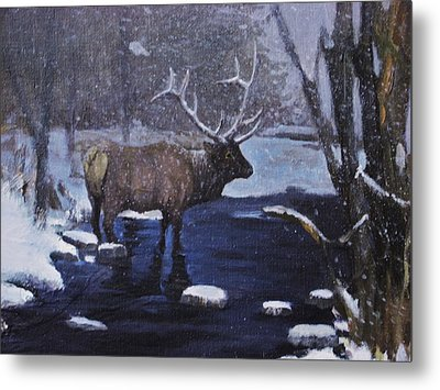 Elk In The Wilderness Metal Print