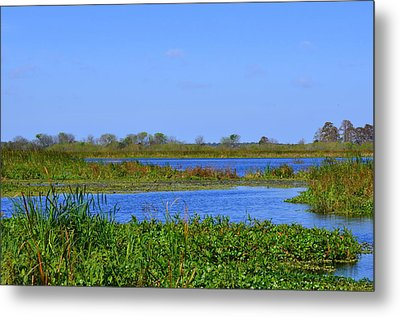 Emeralda Marsh IIi Metal Print
