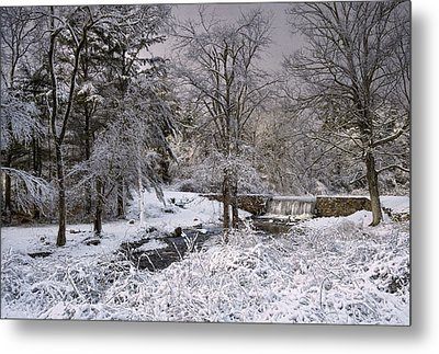 Enchanted Winter Metal Print by Robin-Lee Vieira