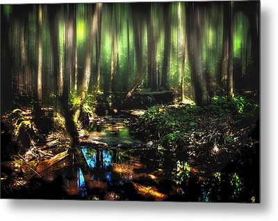 Endless Forest Metal Print by Gary Smith