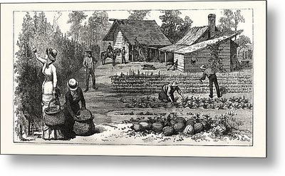 English Garden. Scenes Rugby, The English Colony Tennessee Metal Print by American School