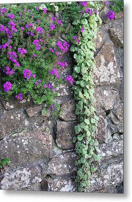 Metal Print featuring the photograph English Garden Wall by Bev Conover