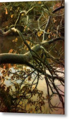Fall At The Creek Metal Print by Ellen Heaverlo