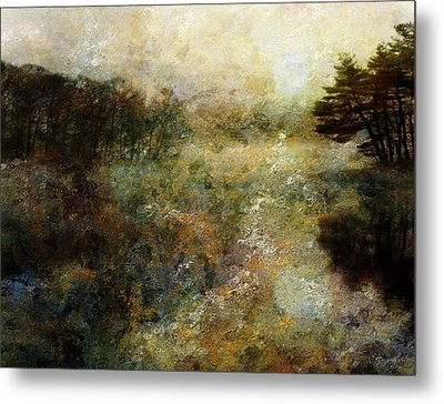 Fall Lake Metal Print