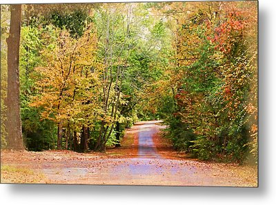 Metal Print featuring the photograph Fall Pathway by Judy Vincent
