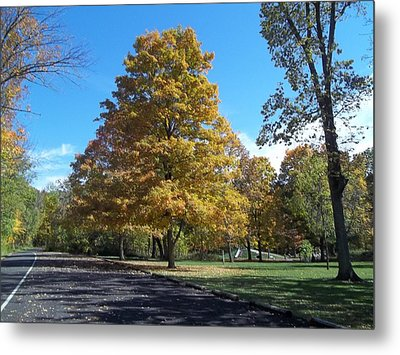 Metal Print featuring the photograph Fall Season by Eric Switzer