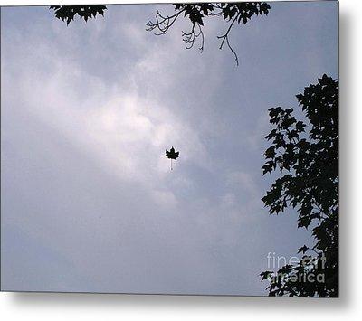 Falling Leaf Aka Lucky Shot Metal Print