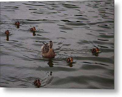 Family Is Everything Metal Print by Vadim Levin