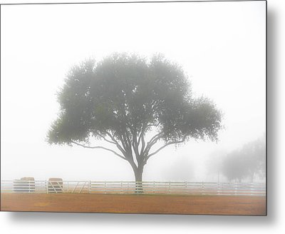 Farm On A Foggy Morning Metal Print