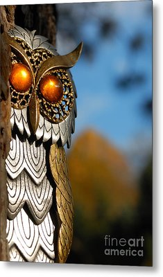 Faux Owl With Golden Eyes Metal Print by Amy Cicconi