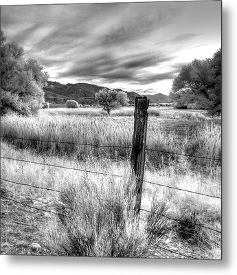 Fence Post In The Meadow Metal Print