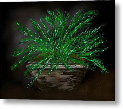 Fern Metal Print by Christine Fournier