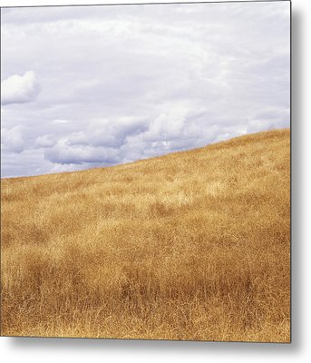 Field And Sky Near Rock Creek, South Metal Print by Bert Klassen