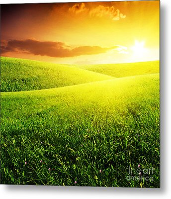 Field Of Grass And Sunset Metal Print by Boon Mee