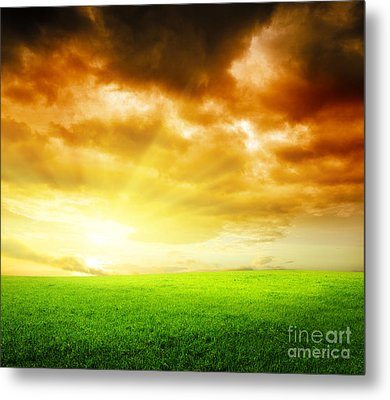 Field Of Grass Metal Print by Boon Mee