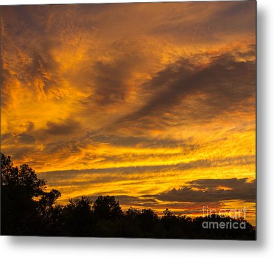 Metal Print featuring the photograph Fiery Skies by Dale Nelson
