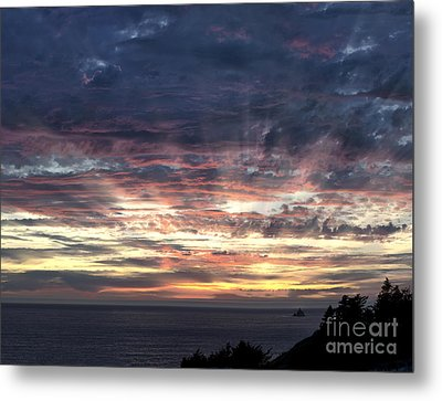 Fire In The Sky Metal Print by Sandra Bronstein