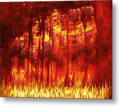 Fireline Metal Print by Wendy J St Christopher