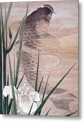 Fish Metal Print by C. F. Kell